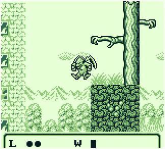 Gargoyle's Quest Écran de jeu