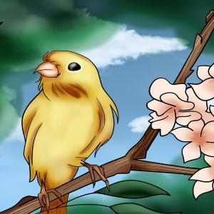 Oiseau dans un r¸eve