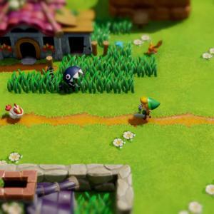 Link se promenant dans le village des mouettes
