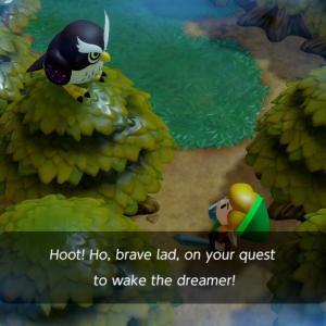 Link interpellé par le hibou