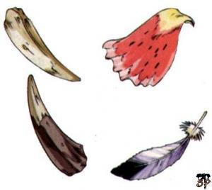 Plume Corne Dent Petale
